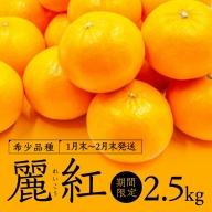 A511.【新種の柑橘】麗紅(れいこう)/約2.5キロ(2022年1月末~2022年2月末発送予定)