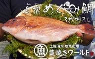 【O-7】足摺めぐみ鯛 活〆3枚卸(冷凍)