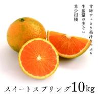 14-31_希少柑橘「スイートスプリング」10kg(段ボール箱入り)【先行予約】