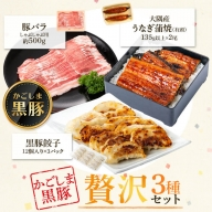 鹿児島県産うなぎ2尾・黒豚バラ・黒豚餃子セット