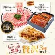 鹿児島県産うなぎ2尾・黒豚肩ロース・黒豚餃子セット