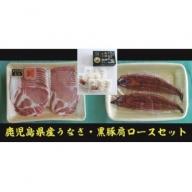 【B02047】鹿児島県産うなぎ2尾・黒豚肩ロース・黒豚餃子セット
