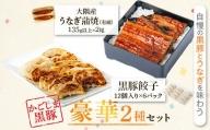 鹿児島県大隅産 うなぎ2尾・黒豚餃子セット