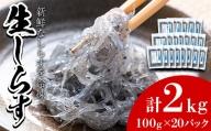 【44518】鹿児島県産生しらす(冷凍)計2kg(100g×20パック) 獲れたてしらすを急速冷凍!鮮度抜群なしらすをご家庭で気軽に!【東串良町漁業協同組合】