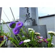 C−116.お墓の供養代行サービス
