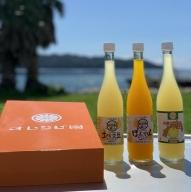 【B-85】自家製かんきつ果汁飲料(希釈用・500ml×3本セット)