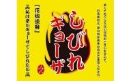 しびれ餃子【ぎょうざの山八】[A2083]