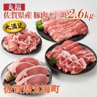 丸福 佐賀県産豚肉セット 2.6kg