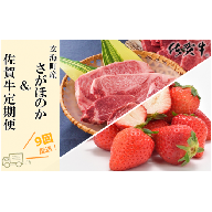玄海町産さがほのか&佐賀牛定期便【9回】