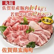 丸福 佐賀県産豚肉(肥前さくらポーク)1.4kgと若鶏(ありたどり)モモ肉2枚セット