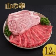 山の幸ギフトセット(佐賀牛ステーキ肉600g・すき焼き肉600g)