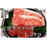 中山牧場 佐賀牛ステーキ 1.2kg