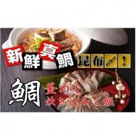 真鯛昆布〆、鯛めし炊き込みご飯(上場産コシヒカリ無洗米付き!)