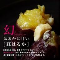MO-A701_都城産島津甘藷 熟成紅はるか 10kg(2L~2S)