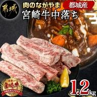 宮崎牛中落ち1.2kg_MJ-2509