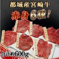 MJ-2612_都城産宮崎牛赤身6種 合計約600g