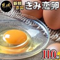 新鮮赤卵「きみ恋卵」110個_MJ-2904
