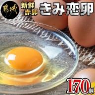 新鮮赤卵「きみ恋卵」170個_MK-2904