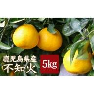 A-041 不知火(しらぬい) [季節限定] 2月より順次お届け 鹿児島県産 しらぬひ みかん 柑橘 柑橘類