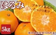 A-058 はるみ 5kg みかん [季節限定] 1月中旬より順次お届け 鹿児島県産 柑橘類 柑橘