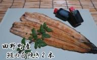 田野町産うなぎの白焼き2本