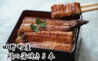 田野町産うなぎの蒲焼き5本
