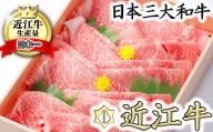 極上近江牛すき焼き・しゃぶしゃぶ用【800g】【CB01SM】