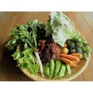 種にこだわり!季節の無農薬、無肥料栽培野菜7品セット12回定期便 [A6502]