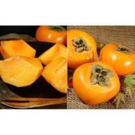 和歌山の種なし柿 約7.5kg(秀品:サイズ・品種おまかせ)/紀伊国屋文左衛門本舗