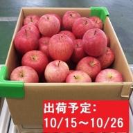 【年内】津軽産不揃い家庭用りんご約10kg 品種お任せ