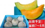 7~8月 盆前 津軽のメロン 約8kg(赤肉・青肉セット)4~6玉・秀~優【青森メロン】