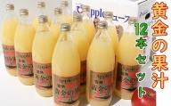 青森県産完熟100% りんごジュース 1L×12本(6本×2箱)