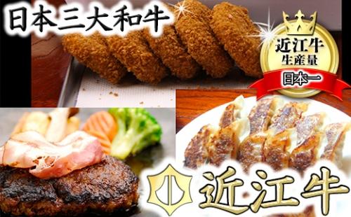 近江牛お惣菜セット(コロッケ、ミンチカツ、ハンバーグ、餃子)【N009SM】