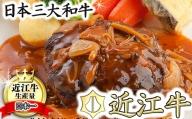 近江牛ハンバーグ【16ヶ(120g×16ヶ)】(デミグラスソース入り)【N010SM】
