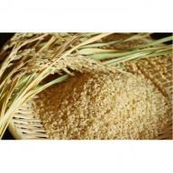 【炭壌米 めんこいな】元年産 玄米 5kg×4袋(合計:20kg)