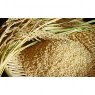 【炭壌米 ゆめおばこ】元年産 玄米 5kg×2袋(合計:10kg)