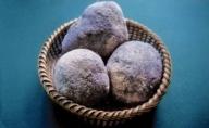 加東市の山の芋 2kg