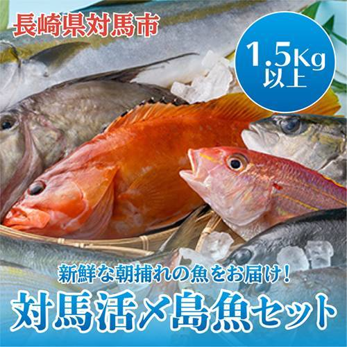 A-067 対馬活〆島魚セット