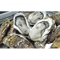 オホーツクサロマ湖産 殻付き牡蠣貝2年物 5kg(30個前後)