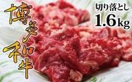 博多和牛切り落とし1.6kg[A2121]