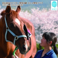 初心者向け ビジター乗馬体験 エヒメ乗馬クラブ(小学生以上1名 30分+引き馬1周)
