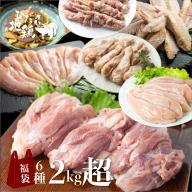 飛騨地鶏三昧 地鶏 モモ肉 手羽先 手羽元 ささみ 串焼き 鶏ちゃん 合計2kg超 鶏肉 飛騨[B0256]