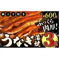 鰻蒲焼 3尾 B-494
