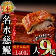 e0-009 鹿児島県産うなぎ蒲焼名水慈鰻 大9尾
