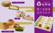 【御菓子司 松野屋】関ケ原銘菓詰め合わせ