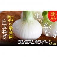 浜松篠原産新白玉ねぎプレミアムホワイト5キロ【無選別品】