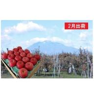 2月  サンふじりんご特A約5kg 糖度13度以上平川市産(14~20玉)