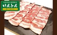 【飛騨・美濃けんとん】けんとん豚バラ焼肉用計1kg