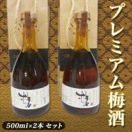 AA-3802_プレミアム梅酒500ml×2本セット