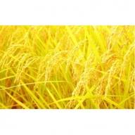 【定期便:全6回】山麓の特別栽培米ヒノヒカリ<10kg×6回> 31-SKM11